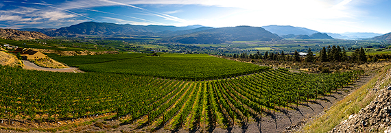 The Okanagan Valley, seen from Hester Creek Estate Winery